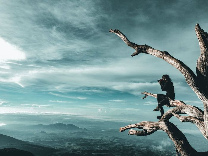 Side view of woman sitting on branch while photographing landscape against sky