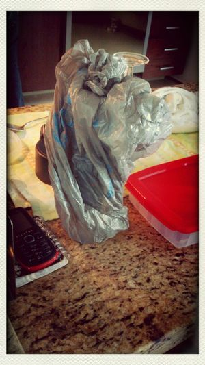 Droopy appeared today in my kitchen. The plastic bad was as it is seen. No bag or dog were altered for making this picture I See Faces Faces Dog Dogs Plastic Perros  Perro Droopy