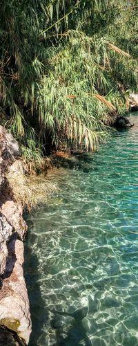 الساخنة بيسان גן השלושה Springs Summer Water Nature