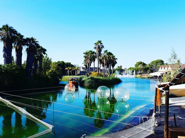 EyeEmNewHere Palm Tree Swimming Pool Tree Water Reflection Vacations Relaxation Tranquility Clear Sky Refreshment Adults Only Sky Outdoors Day Lake Lake View SPAIN España Sevilla Seville Wonderland Islamagica Water Reflections Green Color TCPM The Architect - 2017 EyeEm Awards The Great Outdoors - 2017 EyeEm Awards