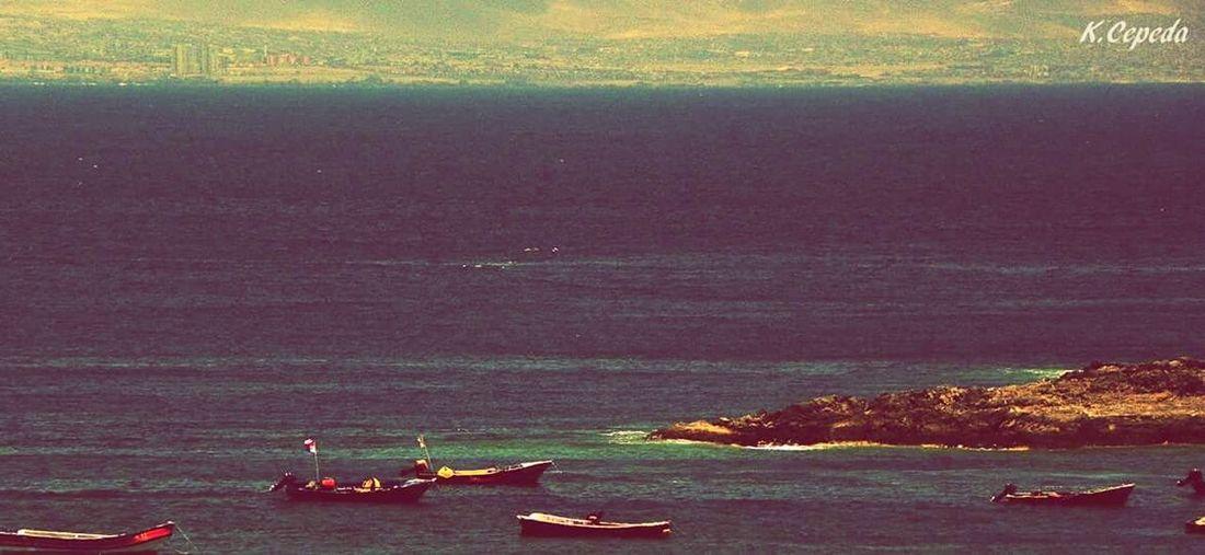 Nautical Vessel Water Transportation Nature Tourism Vacations AntofagastaChile Juan Lopez Outdoors Pescadores Mar