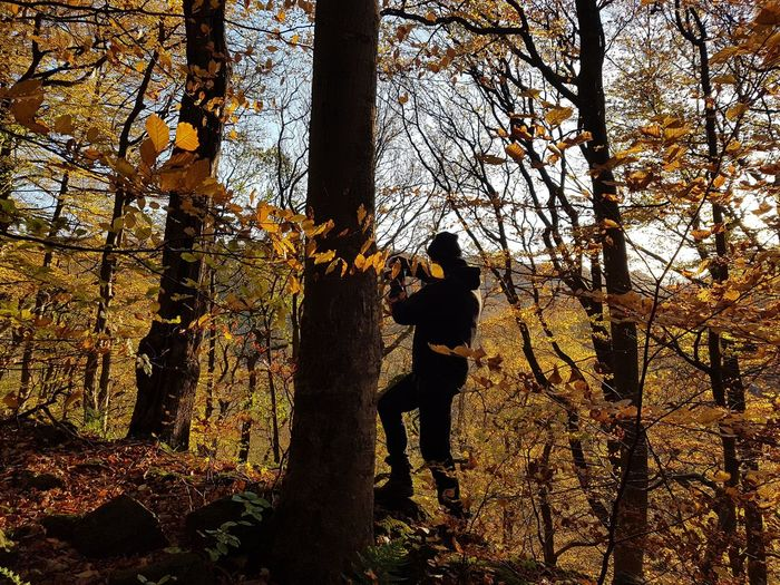 Tree Silhouette Real People One Person Day Tree Trunk Outdoors Forest Nature Branch Sky Beauty In Nature People Only Men Freshness Backgrounds Beauty In Nature Tree Nature Sunlight Yorkshire Mytholm Autumn Autumn Leaves Eaves Wood