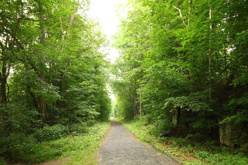 Bike Trail Northampton Bike Trail, Haydenville, Massachusetts