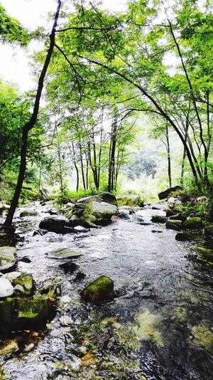 Hello World Relaxing Enjoying Life Yinchuan, China Beautiful Day 🌞🌞🌞🌸🌺🌄 First Eyeem Photo