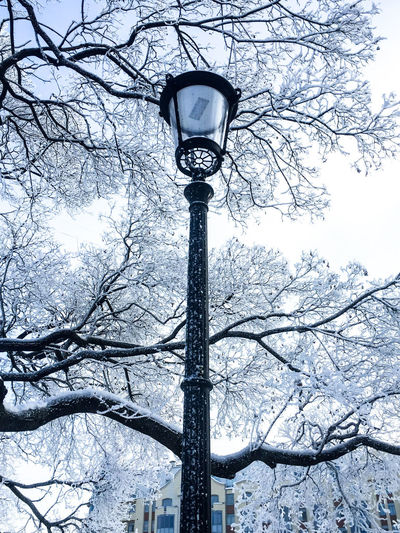 Low angle view of street light against sky during winter