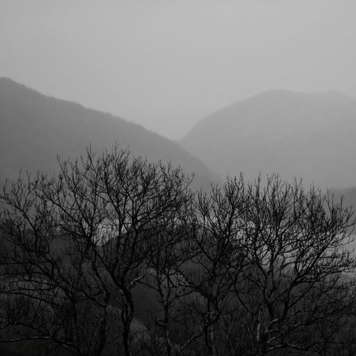 Mountains Mountain Slope Wales Welsh Countryside Black And White Black And White Photography Tree Mountain Fog Winter Silhouette Sky Landscape
