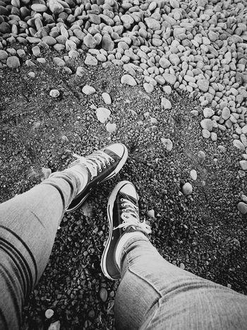 Converse All Star Stone Blackandwhite Low Section Standing Human Leg Men Footwear