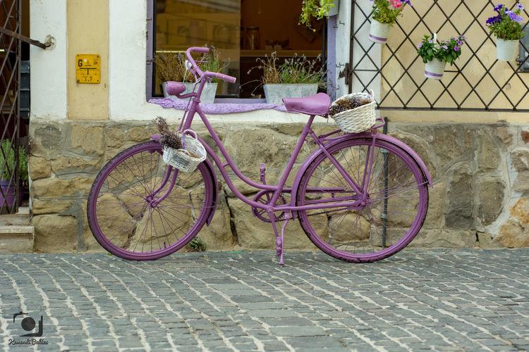 Pink bike Bike