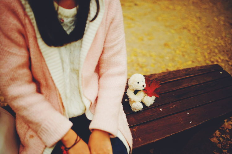 Midsection Of Woman Sitting With White Teddy Bear And Autumn Leaf On Bench At Park