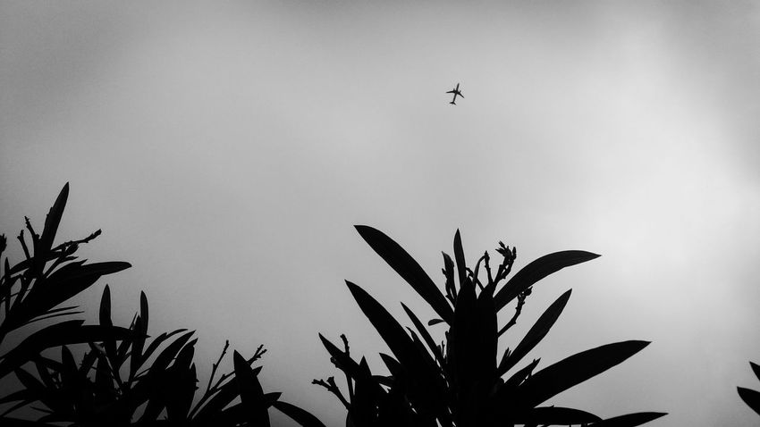 Ethereal Urban Skyscape Black And White Blackandwhite Monochrome Bw_collection Streetphotography Streetphoto_bw Sky Collection Eye4photography