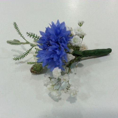 Pin for groom. Prendido para novio Vigo Aleafloristerias Alea Wedding Bodas Pin Paniculata Gysofila Santolina Prendido Centaurea Azzurro Blue Bleu Azul