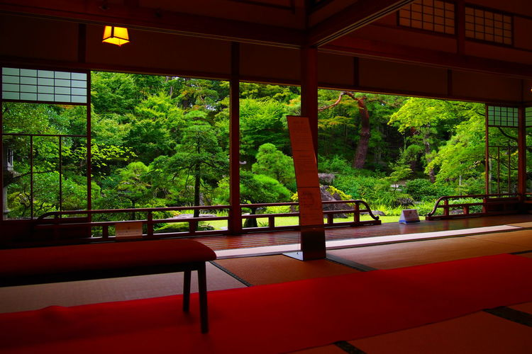 北方文化博物館 Japan Garden Old Building History Nigata Red Home Showcase Interior Tree Window Chair Architecture Green Color