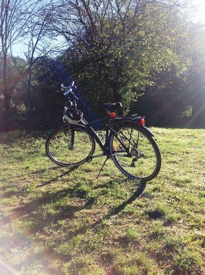 las bicicletas son para el verano.... Eye4photography  Eyemm Nature Lover Bycicle EyeEm Best Shots