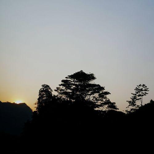 Goodmorning :) Beautiful Sunrise Skyandtrees Southeast Highway Approaching 富山点心楼 Fuyoh