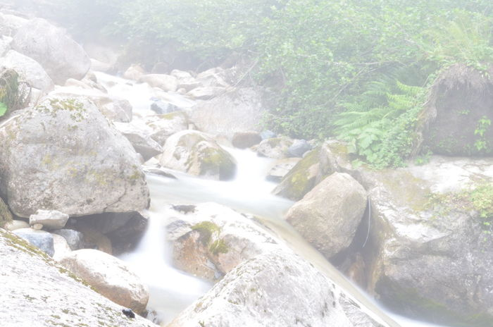 Water Flowing Scenics Forest Rock - Object Beauty In Nature Stream Motion Tranquil Scene Flowing Water Nature Non-urban Scene River Idyllic Environment Remote Tranquility Waterfall Stone Day Nature Beauty In Nature Mountain Cloud - Sky Full Length