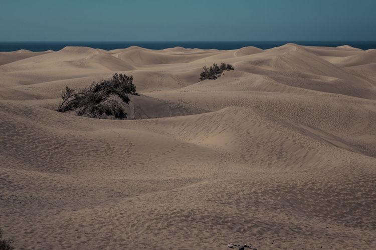 Sandy beach against sky