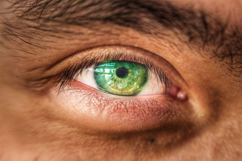 Close-up of green eye