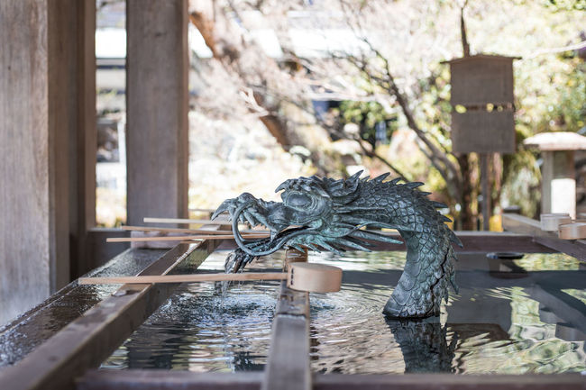 A dragon shaped well at a temple in Takayama, Japan Dragon Entrance Fountain Shrine Shrine Of Japan Animal Animal Themes Art And Craft Cleansing Cleansing Ritual Creativity Day Focus On Foreground Fresh Nature No People Outdoors Representation Sculpture Selective Focus Spring Temple Water Well  Wood - Material