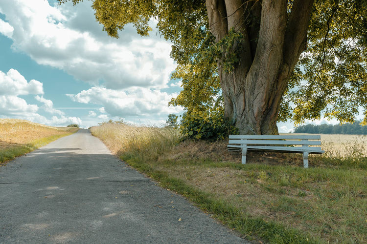 empty bench before an old lime tree by road against sky Absence Bank Baum Bench Cloud - Sky Day Direction Empty Grass Juni Lime Tree Linde Nature No People Outdoors Park Bench Plant Road Seat Sky The Way Forward Tilia Tranquility Transportation Tree Tree Trunk Trunk