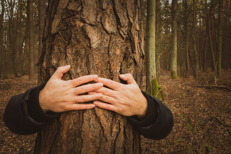 Close-up of man embracing tree trunk in forest