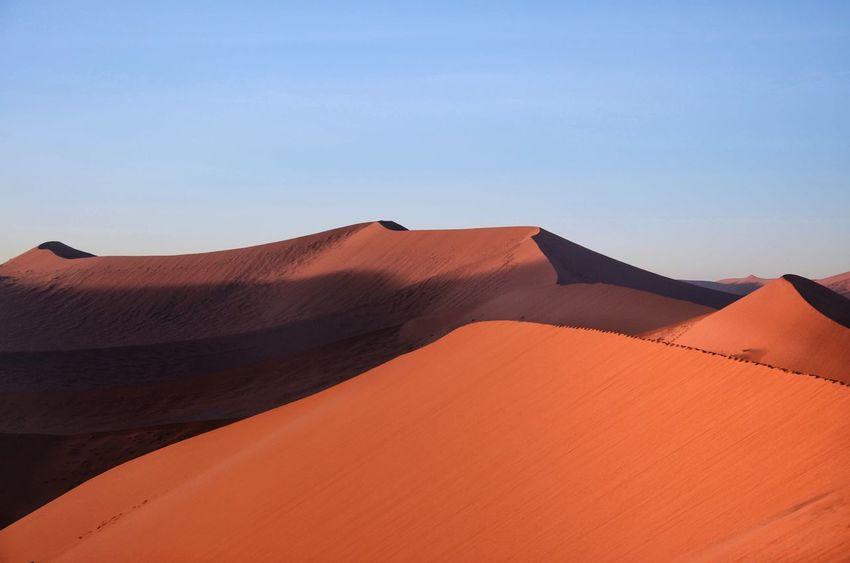 Sand Dune Desert Tranquility Clear Sky Nature Outdoors Namibia Namib Desert Sossusvlei Redsand Bluesky