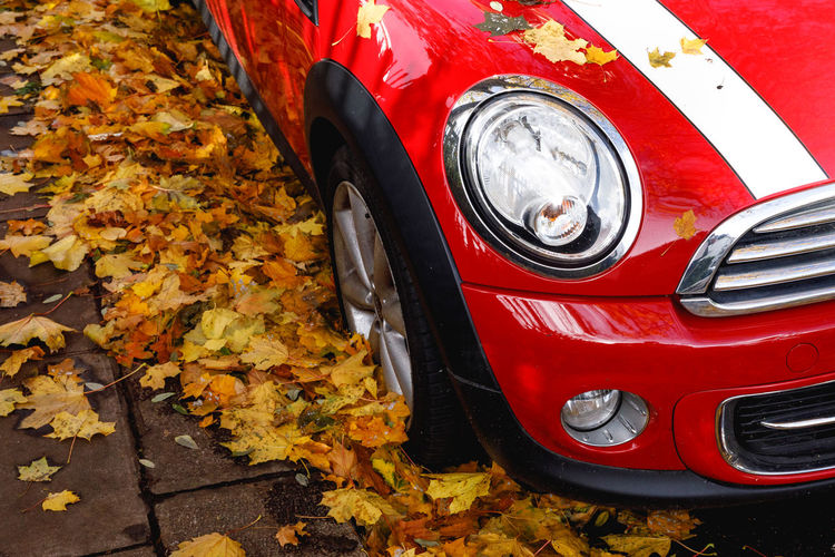Autumn in London Mode Of Transportation Transportation Autumn Motor Vehicle Red Change Car Land Vehicle Day Leaf Plant Part No People Close-up Headlight Outdoors Stationary Orange Color High Angle View Vintage Car Leaves Wheel Tire Autumn Travel Destinations London Autumn Mood A New Perspective On Life British Culture