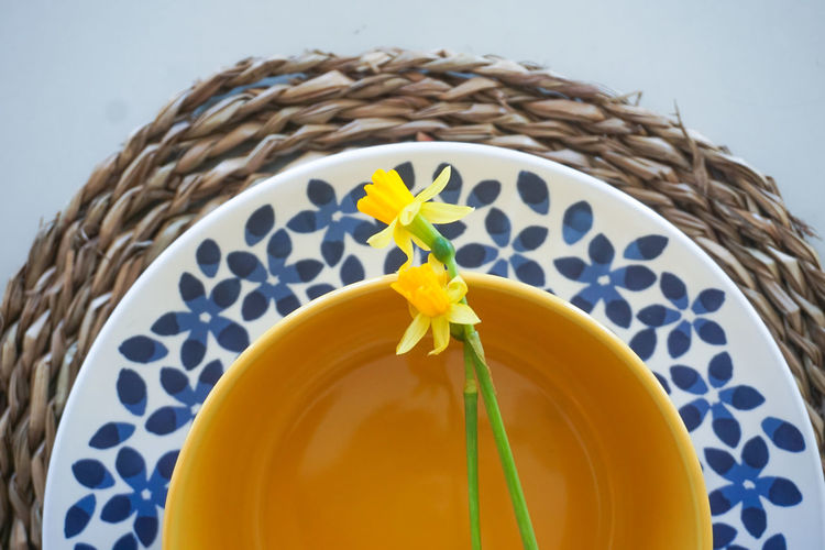 Table setting for easter Easter Easter Ready Easter Sunday Plate Plates Blue Yellow Flower Yellow Color Spring Springtime Close-up Directly Above Table Table Setting Yellow Close-up Ready-to-eat Plate Served Dish
