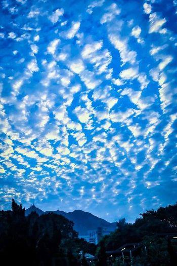 Blue sky & white cloud