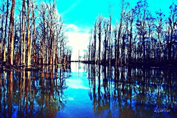 Mississippi River Nature Photography Mississippi River Flood Underwater Flooding Water Reflections
