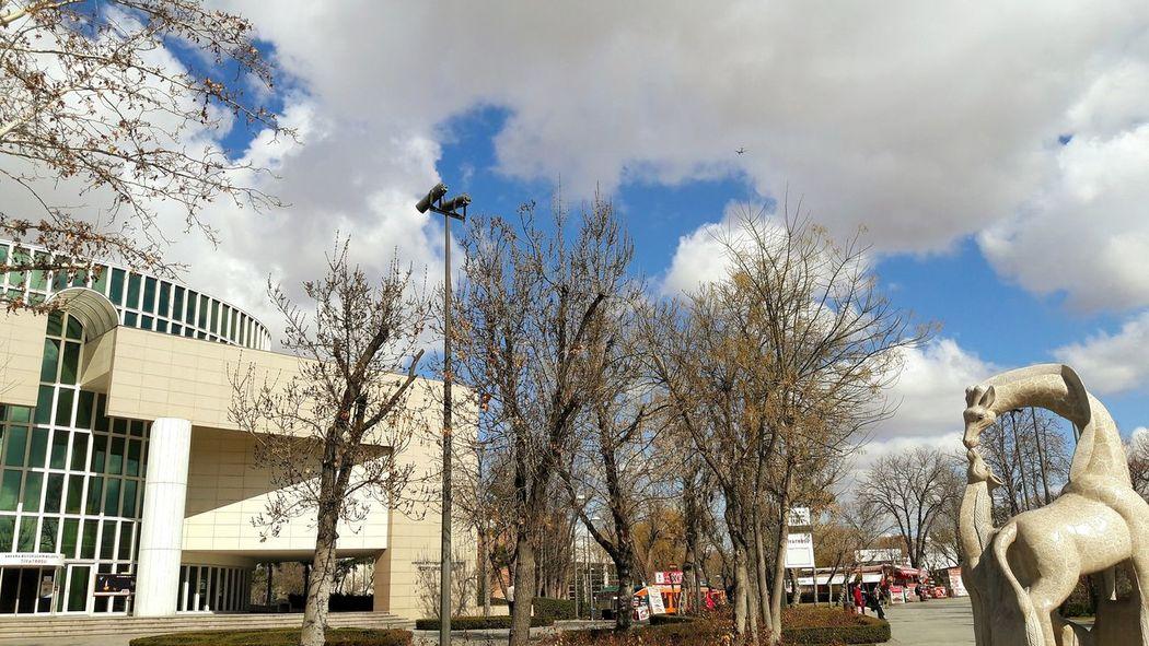 Sky Cloud - Sky Outdoors City Motion Day Theater Tiyatro Tiyatroyuseviyoruz Tiyatrozamanı Tree Gençlik Parkı Ankara/turkey Baskent Tiyatrosu Yaşasın 😍😌😊 Sanat Art Art Is Everywhere The Street Photographer - 2017 EyeEm Awards