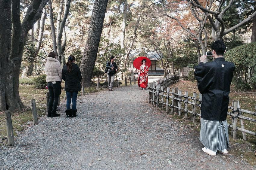 Ancient Blue Custom Fresh Freshness Japan Marry Nagoya Park People