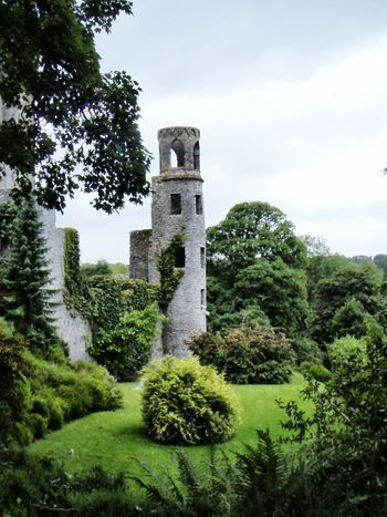 Ireland🍀 Blarney Castle Castle Ruin EyeEm Best Shots Green EyeEm Best Shots - Nature Nature_collection