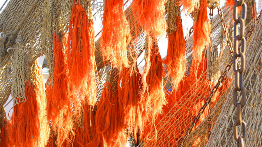 Orange Color No People Nature Close-up Day Outdoors Pattern Hanging Full Frame Backgrounds Low Angle View Metal Sunlight Red Built Structure Architecture Plant Heat - Temperature Protection Panoramic