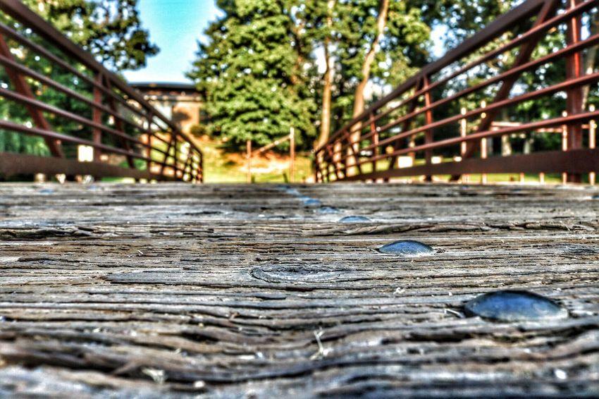 Showcase July Trail Arkansas Bridge Wood Nature Macro Macro_collection Canon Canonphotography Path Edit