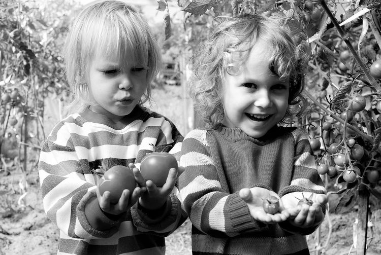Happy boy with shocked brother holding tomatoes in organic farm