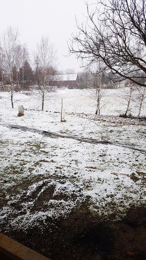 Inverno❄❄❄ Polonia  Giorno Natale 2017 Shades Of Winter