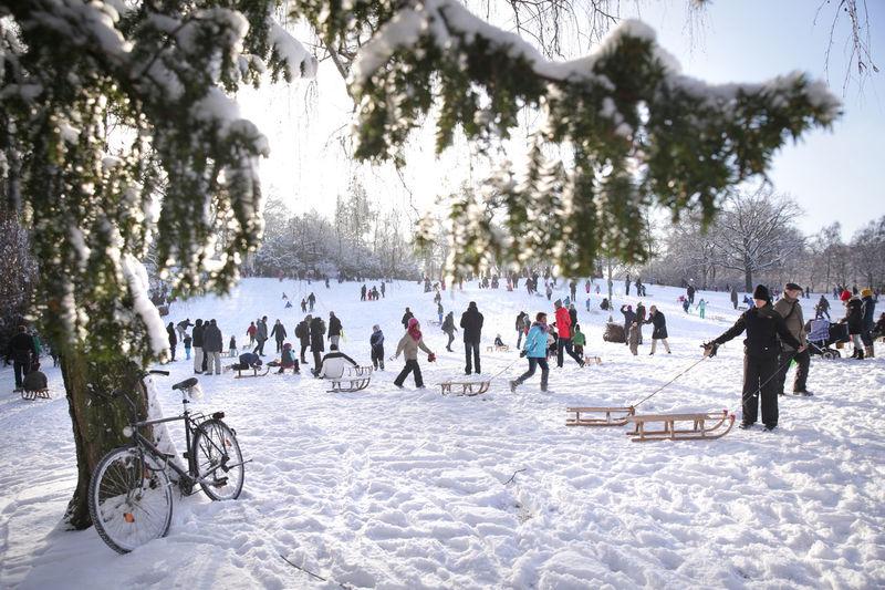 Tourists enjoying in park