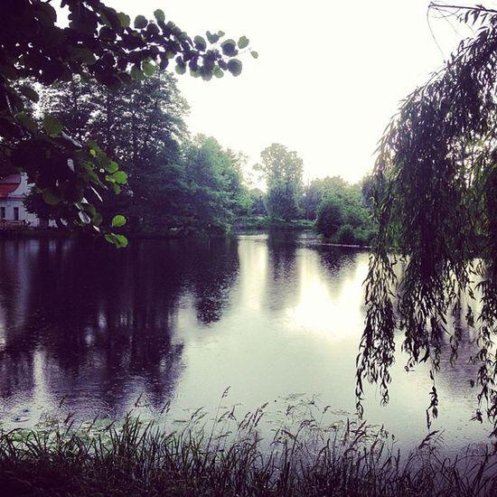 Zwierzyniec Polska Nature