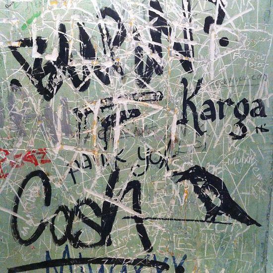Gece calismasina kadar Kadikoy Karga da vakit olduruyoruz Istanbul bar kargabar duvar streetart art ciyt wall sanat