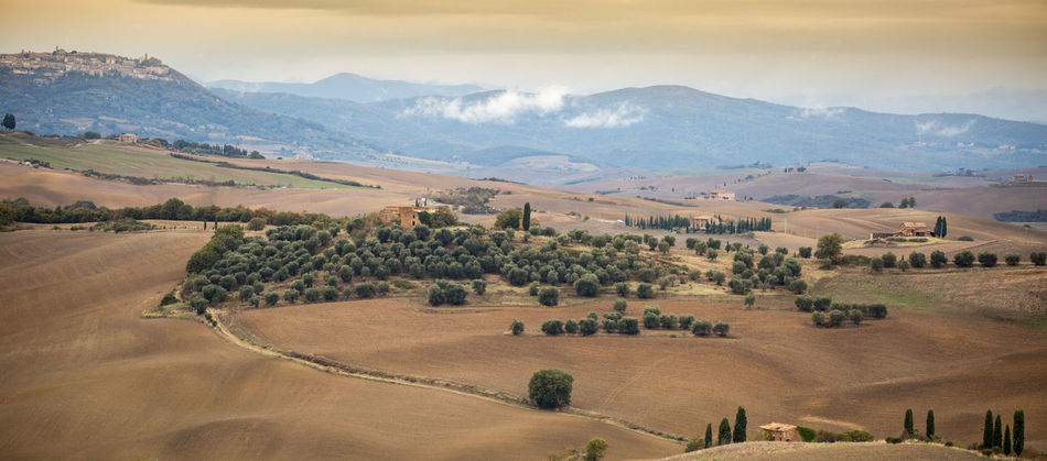 Val d'Orcia Landscape Environment Scenics - Nature Mountain Tranquil Scene Beauty In Nature Tranquility Land Mountain Range Field Sky Nature Non-urban Scene Plant No People Day Tree Idyllic Outdoors Rural Scene Rolling Landscape