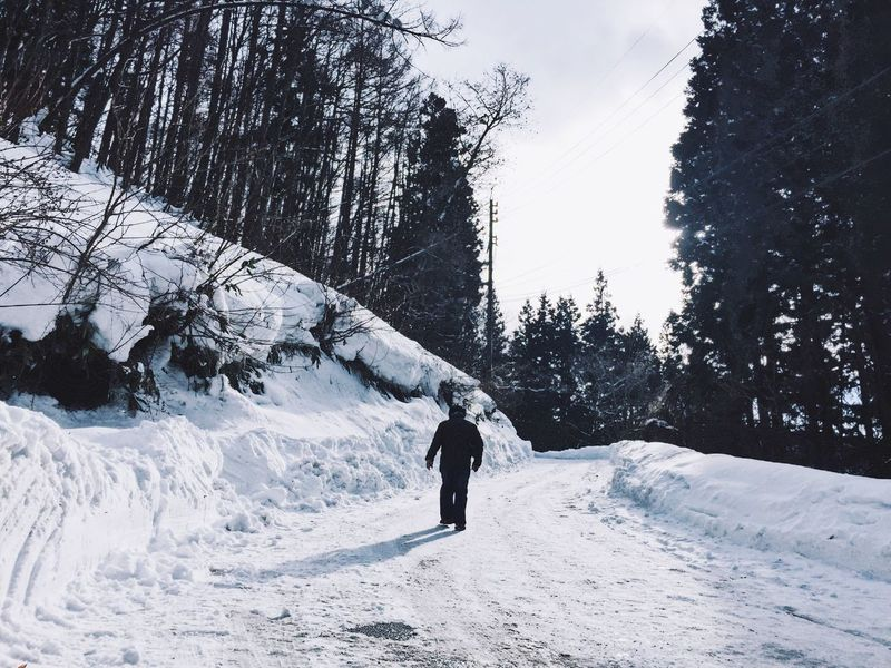 Winter Snow Cold Temperature Tree Real People Nature One Person Lifestyles Day Outdoors Leisure Activity Adventure Beauty In Nature Scenics Sky Men Ski Holiday One Man Only People