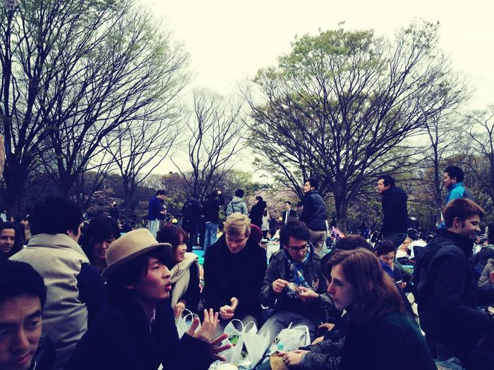 Int. Party At Yoyogi Park