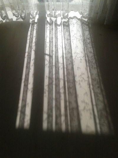Sunshine comes