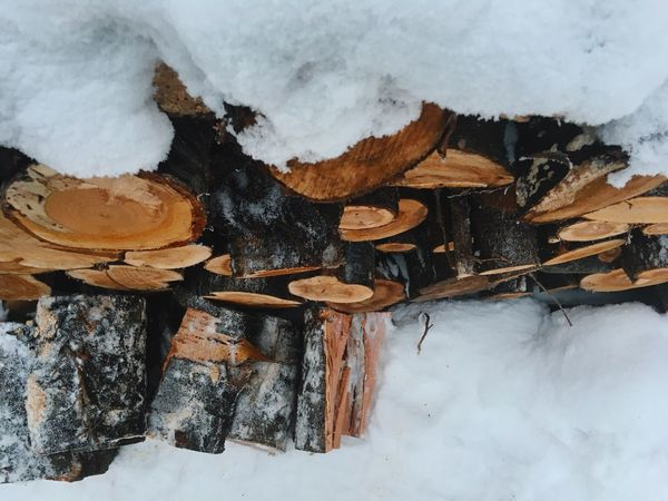 Log Timber No People Heap Woodpile Snow Winter Close-up Day Nature Forestry Industry Outdoors