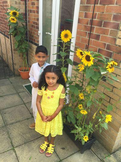Amelia Miah Adam Miah Adam's Sunflower Adam's Sunflower🌻