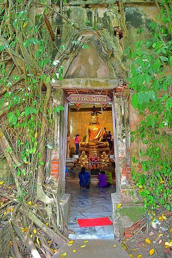 Wat (Temple)