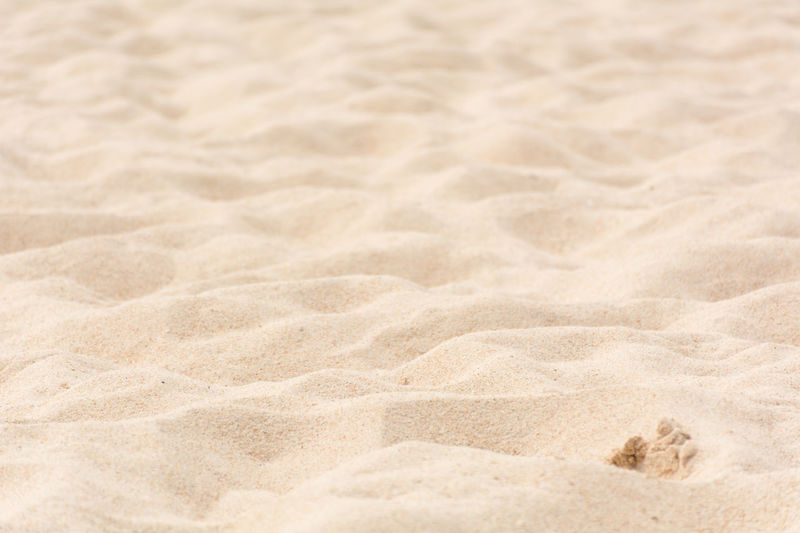 Backgrounds Beach Beach Sand Close-up Day Full Frame Nature No People Outdoors Park Sand Sand Beack Sand Dune Sand Park Sand Patterns Sand Texture