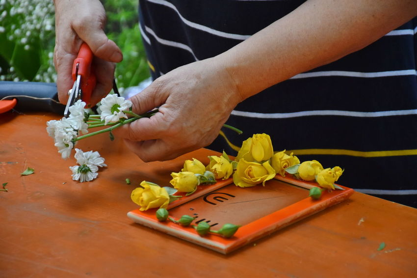 Tool Skill  Craft Finger Flower Freshness Hand Holding Human Body Part Human Hand Lifestyles Midsection One Person Plant Real People Table Wood - Material Plant Close-up