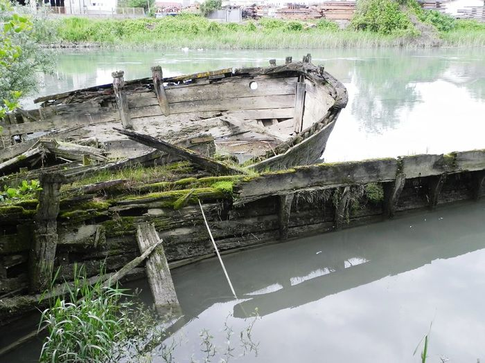 Laguna Silent Lagoon Old Boats Wrecked Water Green Treviso Italy