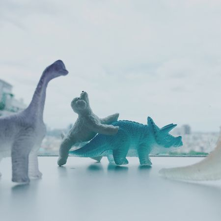 Animal Themes Sky Focus On Foreground Tranquility No People Tranquil Scene Toy Dinosaur Dog Humor Joke Gag